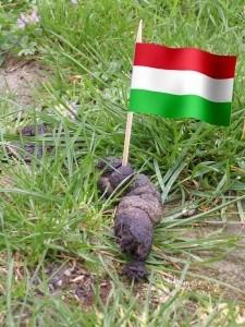 ungariaasacume2